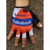 Vente Privee 2014 Team Rabobank Gant Cyclisme